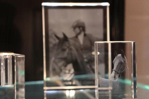 Herinneringen aan je paard