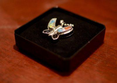 Ashanger vlinder, multicolour.