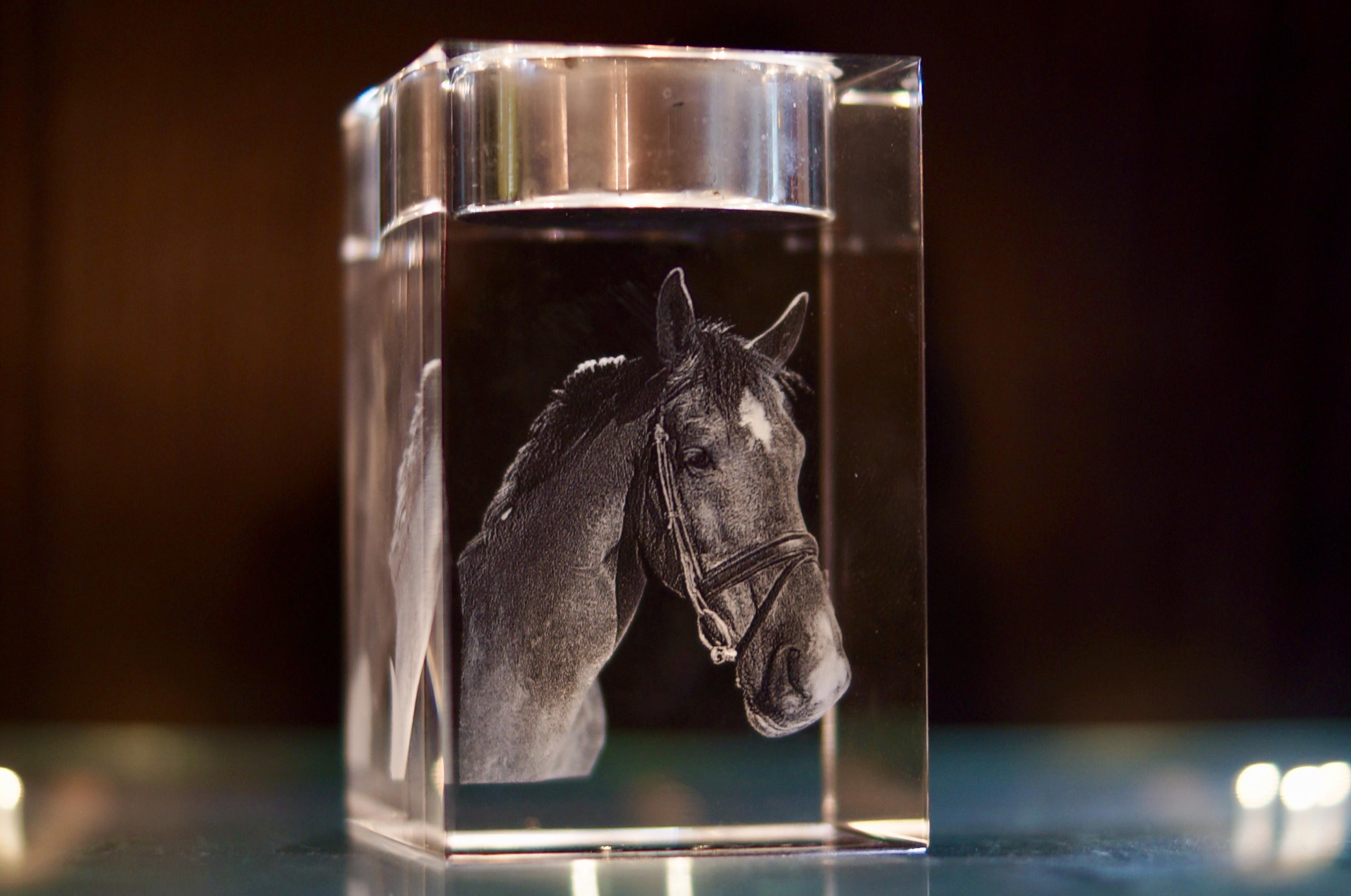Voorbeeld van emotiebeeldjes uit de collectie van Paardencrematorium Het Hoeksche Hof