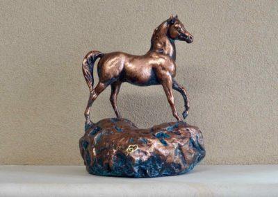 1554-Paard op hart